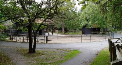 hage-slottskogens-djurpark